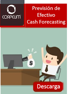 Cash Forecasting - Previsión de efectivo